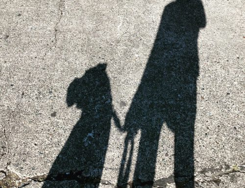 LIFE INSPIRED FITNESS: Wonder Walk
